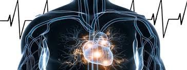 Resultado de imagen de el cuerpo es electrico